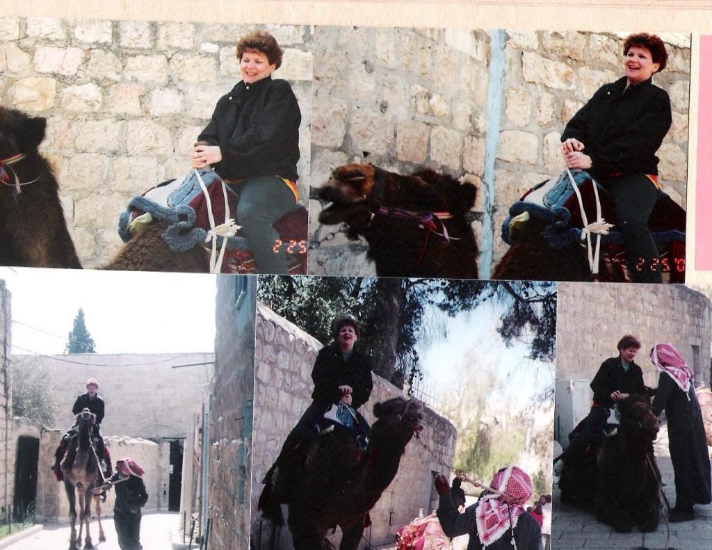 MesuJerusalem Camel Rides 001